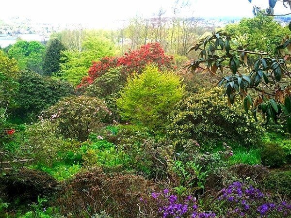 things to do Branklyn Gardens