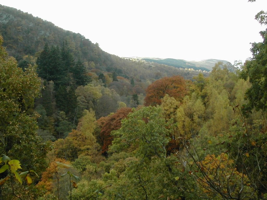 things to do in Pitlochry 11 - Killiecrankie Gorge