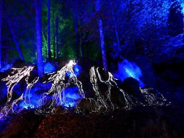 things to do in Pitlochry 12 - Enchanted Forest Pitlochry
