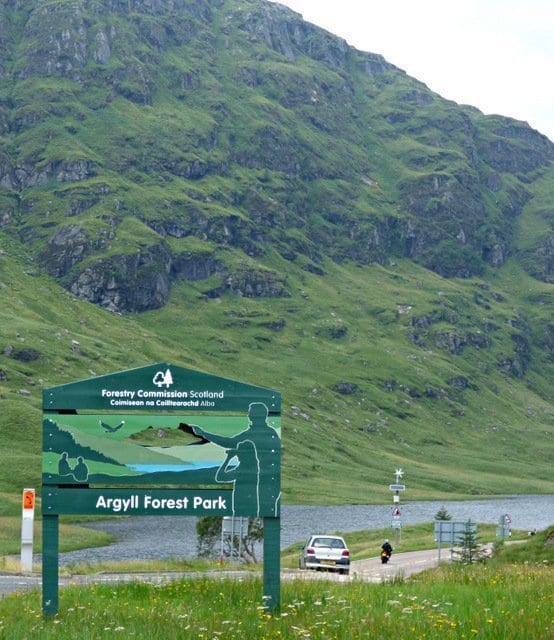 Argyle Forrest Park: things to do in Arrochar