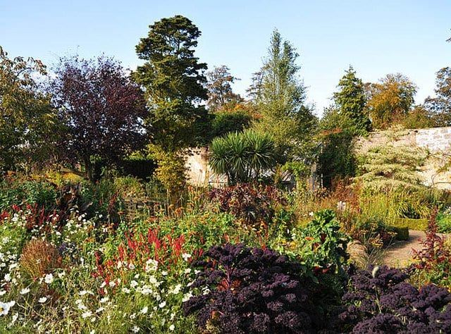 things to do in st andrews - Cambo Gardens