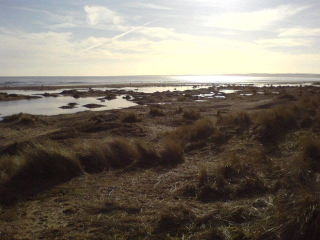 Kinshaldy Beach - things to do in St Andrews