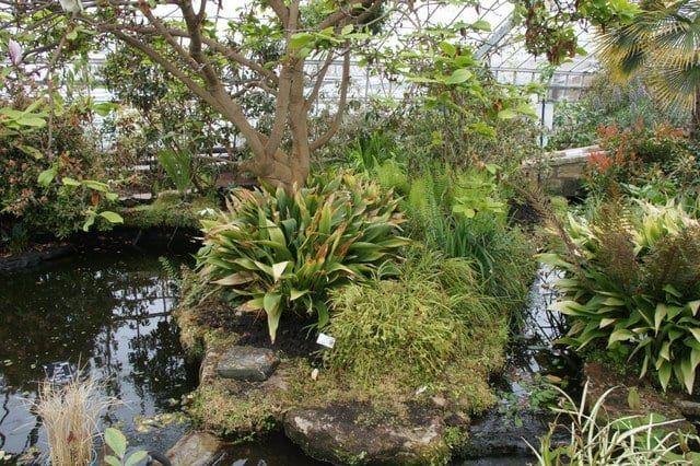 Botanical Garden in St Andrews